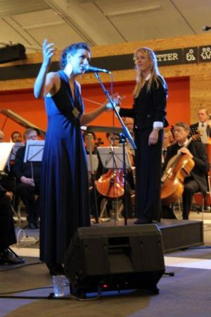Vejle Symfoniorkester